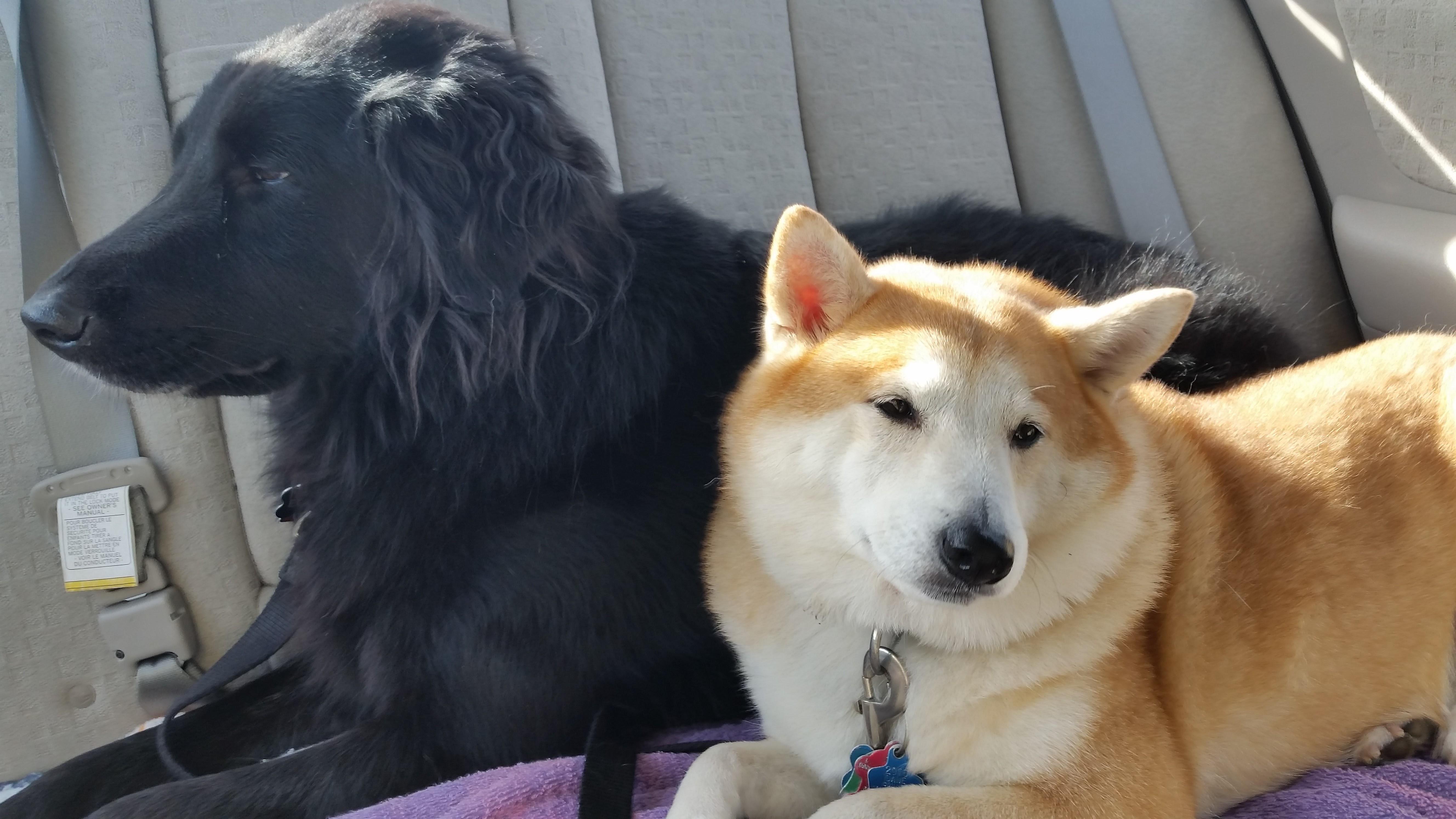 Edgar and Maya